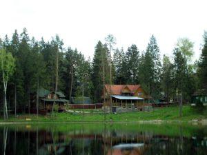 Царский Лес на конкурсе ЗАМЕТЬТЕ